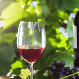 Glass of wine. Glass and bottle of vintage red wine on a table. Outdoor shot Royalty Free Stock Images