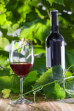 Glass of wine. Wine glass and a bottle on a wooden table. Outdoor shot of delicious alcohol drink Stock Image