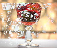 A glass of wine. Candy in a glass. Background shrub with berries. The red berries of rose hips Royalty Free Stock Images