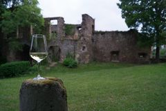 Glass of wine in front of old castle wall. With green meadow stock photos