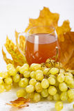 Glass of wine with grapes and leaves Stock Image