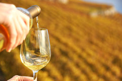 Glass of wine in the hand Royalty Free Stock Photo