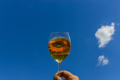Glass of wine holding in the sky Royalty Free Stock Photo