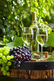 Glass of wine an old barrel and grape Royalty Free Stock Images