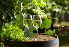 Glass of wine an old barrel and grape Royalty Free Stock Photo