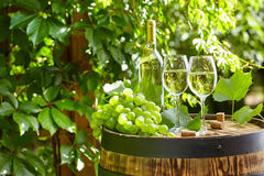 Glass of wine an old barrel and grape Royalty Free Stock Photos