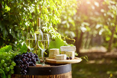 Glass of wine an old barrel and grape Royalty Free Stock Photography