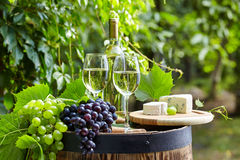 Glass of wine an old barrel and grape Royalty Free Stock Image