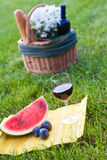 Glass of wine and picnic on the grass. Picnic on the grass with red wine Stock Photo