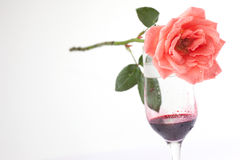 Glass of wine and roses with water drops Royalty Free Stock Photos