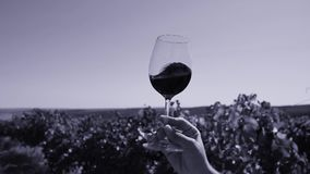 Glass of wine in the sky. Glass of wine, rotating in the sky. Tasting wine, copy space stock video