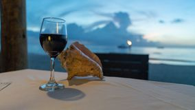 Glass of wine while over looking the ocean stock photo