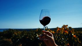Glass of wine in the sky. Glass of wine, rotating in the sky. Tasting wine, copy space stock video footage