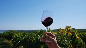 Glass of wine in the sky. Silhouette of a glass of wine, rotating in the sky. Tasting wine, copy space stock footage