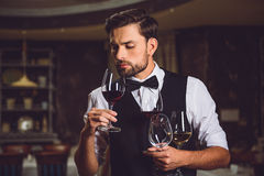 This glass of wine smells better. Fascinated waiter is standing. He holding goblets with scarlet and white wine, inhaling scent Royalty Free Stock Photography