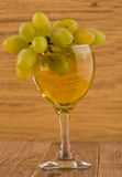 Glass with wine and vine Stock Photos