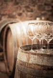 Glass of wine in the wine cellar stock photos