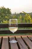 Glass of wine on wooden table with picturesque view Stock Photography
