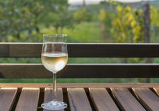 Glass of wine on wooden table with picturesque view Stock Images