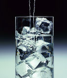 Glass With Water And Ice Royalty Free Stock Photos