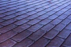 Glassa del gelo di mattina sul tetto rosso delle assicelle Immagine Stock