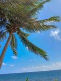 Glassa di estate in una spiaggia fotografie stock