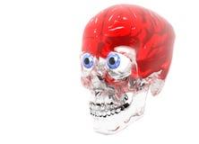 Glasschädel mit glühendem rotem Gehirn Stockfotografie