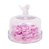 Glasschüssel des rosa Eibisches lokalisiert auf Weiß Stockfotos