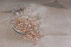 Glasschotel van Pinto Beans Royalty-vrije Stock Afbeelding