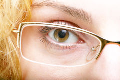 Glasses. An image of brown eye in glasses Stock Photos