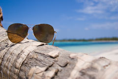 Glasses. Sun glasse on the palm trees on Bavaro beach, Dominican republic royalty free stock photography