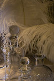 Glasses. Glass and white feather. Fragile. Gentle royalty free stock images