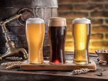 Glasses of beer and ale barrel on the wooden table. Craft brewery.  royalty free stock photo