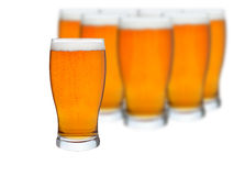 Glasses of beer isolated. On a white background Royalty Free Stock Image