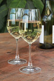 Glasses & Bottle of White Wine on Outdoor Table Stock Photos