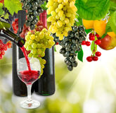 Glasses and bottles of wine and grape close-up Stock Images