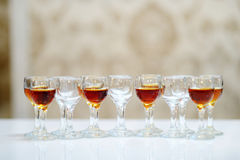 Glasses of brandy arranged in a row Stock Images