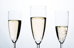 Glasses of  Champagne Stock Photos