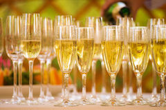 Glasses with champagne alcohol cocktail banquet Stock Images