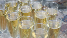 Glasses of champagne with bubbles. Champagne glasses with bubbles standing on the table stock video footage