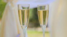 Glasses with champagne close up stock video footage