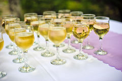 Glasses with champagne for the guests Stock Photos