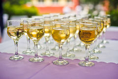 Glasses with champagne for the guests Royalty Free Stock Images
