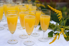 Glasses with champagne and orange juice on wedding Stock Photos