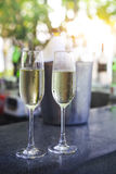 Glasses of champagne in outdoor resort bar Royalty Free Stock Photo