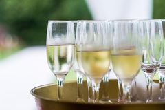 Glasses with champagne for party Stock Photography