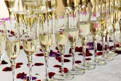 Glasses of champagne with rose petals Stock Image