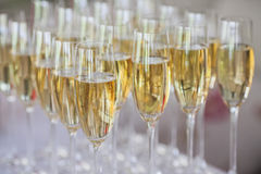 Glasses of champagne on the table Royalty Free Stock Photo