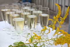 Glasses with champagne on wedding Stock Photo