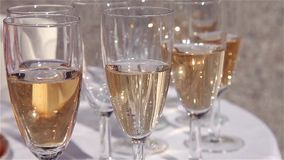 Glasses of champagne on white table close up stock video